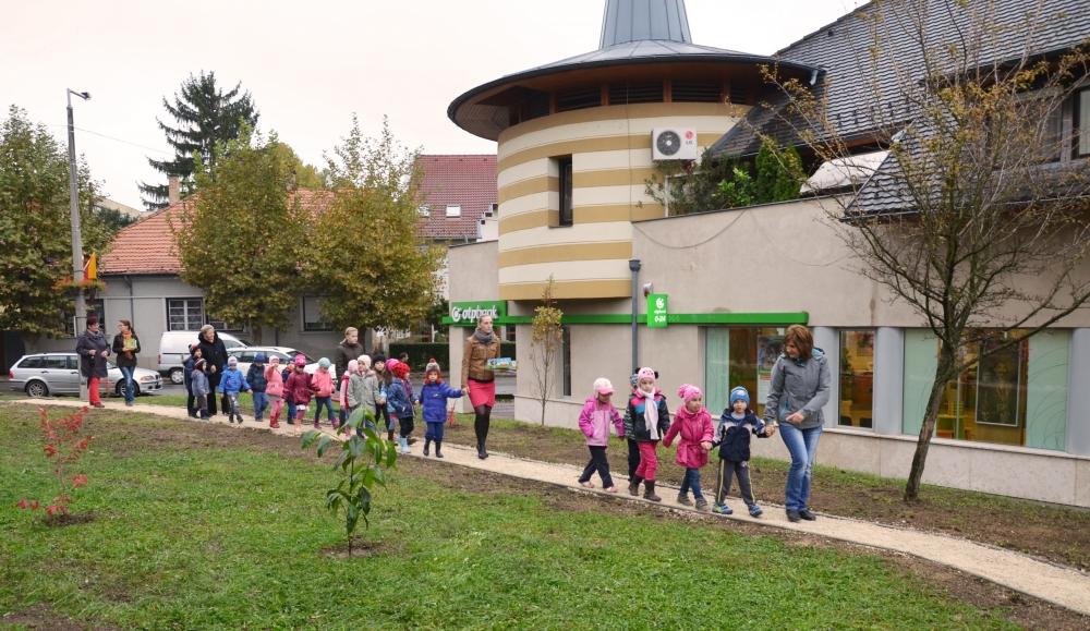 Hét kontinens növényeit mutatja be az új dombóvári park