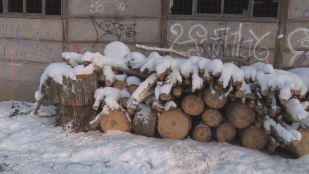 Rendkívüli faosztás a zimankóban